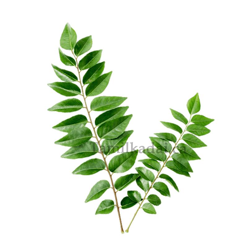 Curry Leaves (Bag) - கறிவேப்பிலை
